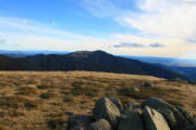 Mt Buller from Mt Stirling