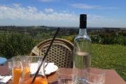 Massaros Winery Views